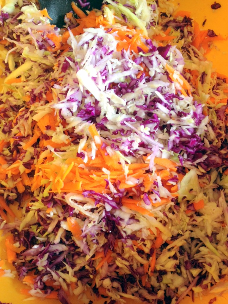 "Toss the red cabbage with grated carrots and green cabbage.  All freshly grated, of course.  Don't you dare buy a bag of shredded ""coleslaw veggies."""